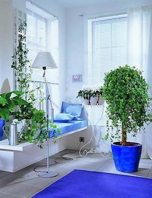 最全室内装修风水禁忌 为主人定做的法宝 高清图片